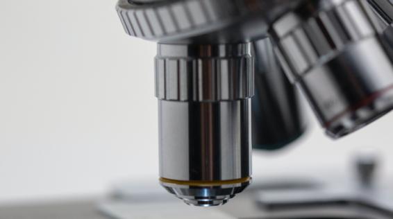 EASD 2020: è italiana la ricerca internazionale sul diabete